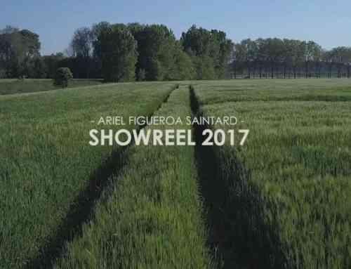 Showreel Arielfigueroa 2017