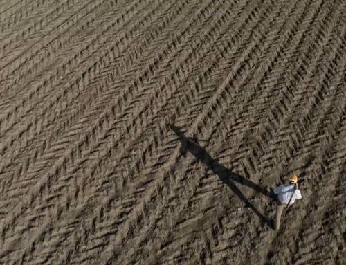 Projet Vidéo : Chasse sur le domaine d'Andigny